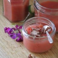 Watermelon & Agave nectar pudding