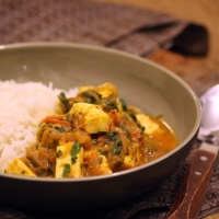 Baby-friendly Curry with Paneer & Spinach