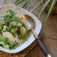 Spring Vegetable & Chicken Stew